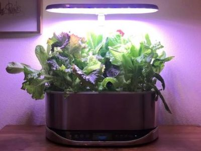 Aerogarden Bounty Elite в платине распроданы